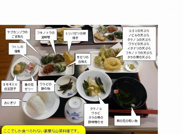 20180424-s-山菜献立2.jpg